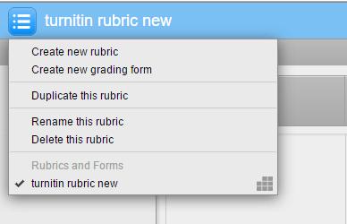 rubric options