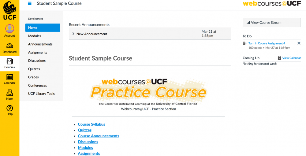 UCF Knights Online: What Do I Need to be a Successful Online