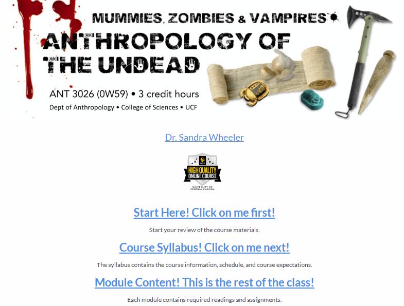 Course homepage Screenshot