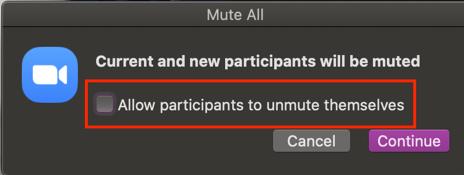 Allow participants to unmute themselves