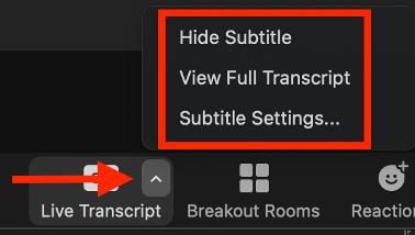 Live Transcript options